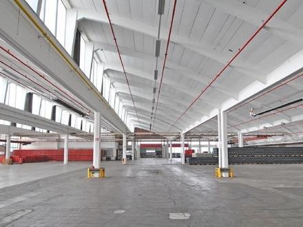 Gesprinklerte Lager- und Industriehalle im Lloyd Industriepark