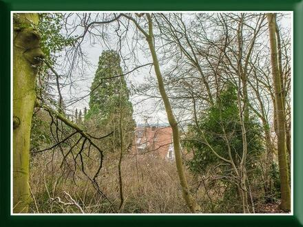 Naturnahes Baugrundstück in bester, oberster Hanglage, mit altem Baumbestand