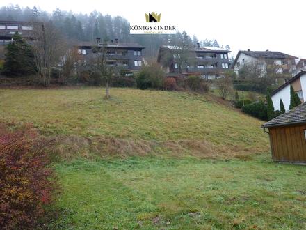 Bad Teinach im Schwarzwald: Großes Mittelgrundstück in reizvoller Lage