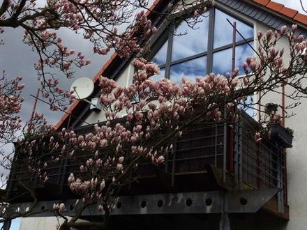 Traumhaft schöne Maisonettewohnung mit großem Balkon im Herzen von Fallersleben