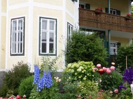 Ansprechende Büro-/Praxisräumlichkeiten in zentraler Lage von Bad Goisern
