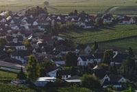 Kleinkarlbach bekommt kleines Neubaugebiet