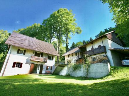 Slowenien: Hube im Soca Tal - am Rande des Nationalparks Triglav