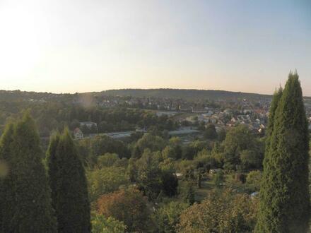 Charmante 2-Zimmer-Einliegerwohnung mit Ausblick in Stuttgart-Killesberg