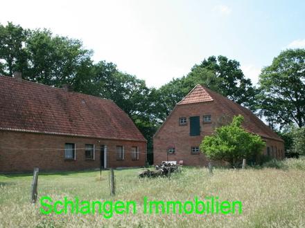 Objekt Nr. 19/823 Einfamilienhaus mit großen Stallungen und Weidefläche in Freisoythe OT Ellerbrock