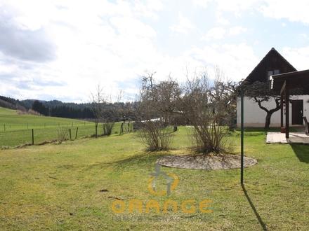 *** EFH mit phantastischem Grundstück in Röthenbach ***