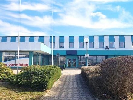 Ausstellungsfläche im Gewerbegebiet Altchemnitz zu vermieten!