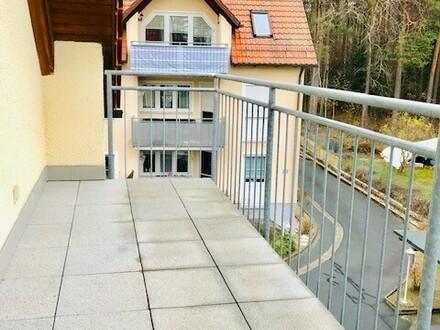 Helles 1-Zimmer-Apartment mit Balkon am Brandweiher
