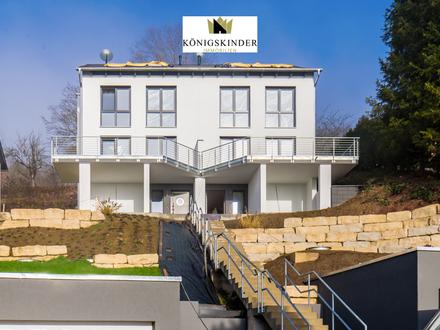 Neubau Doppelhaushälfte mit traumhafter Aussicht in Reichenbach