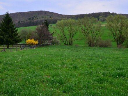 Wenn Sie die Natur lieben, dann bauen Sie auf diesem ca. 1596 m² teilerschlossenem Grundstück!