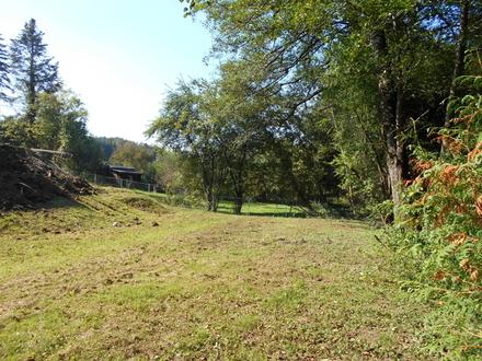 Andritz-Rainleiten Höhenlage 3ETW+Garten Erstbezug 500m² Grundstück am Wald provisionsfrei !