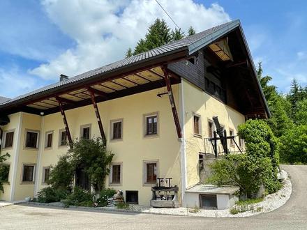 Mühle mit eigenem E-Werk am Bachlauf! 600 m² WNfl., Stall & große Tenne auf ca. 30.000 m² Grund