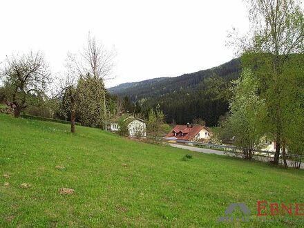 Großzügiges Baugrundstück in der Gemeinde Drachselsried