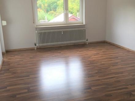 Renovierte 2 Zimmer-Wohnung mit Balkon zum Soforteinzug !!!