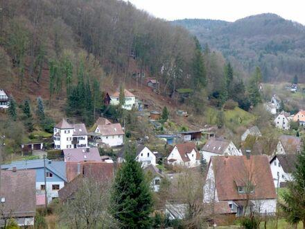 9 2 5 qm in unverbaubarer Hanglage mit Panoramablick auf die Hersbrucker Schweiz in Pommelsbrunn