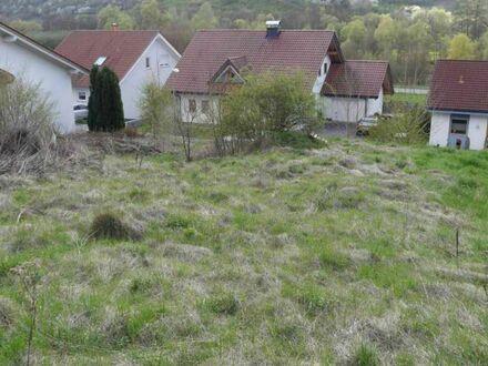 Großzügiger und voll erschlossener Bauplatz in Mannweiler-Cölln ( VG Alsenz-Obermoschel)