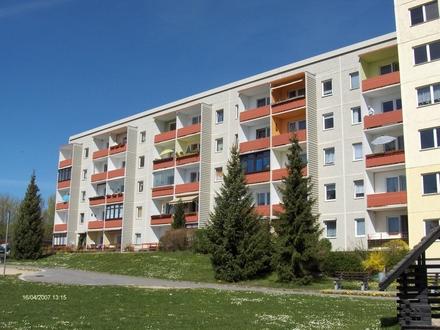 Große geräumige Wohnung mit Blick ins Grüne