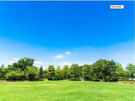 Grundstück Land und Forstwirtschaft in 72356 Dautmergen, Hau