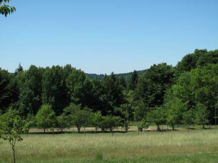 Bauplatz für Naturfreunde
