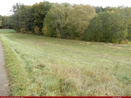 Herrliches Grundstück in Waldrandlage