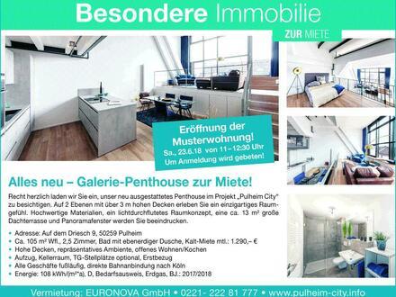 Galerie-Penthouse zur Miete