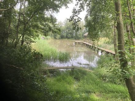 Idylischer See zum Verkauf