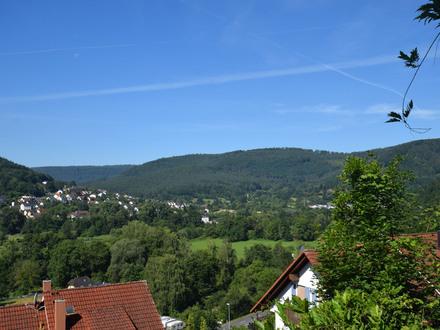 Großes Grundstück mit Fernsicht in Amorbach