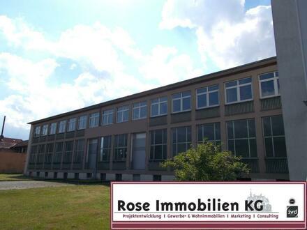 ROSE IMMOBILIEN KG: Lager-/Produktionshalle mit 3 Rampen!