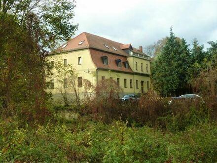 +++ 1 Raumwohnung im Alten Rittergut von Elstertrebnitz +++