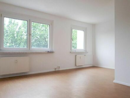 Renoviertes 1-Zimmer-Apartment in grüner Umgebung