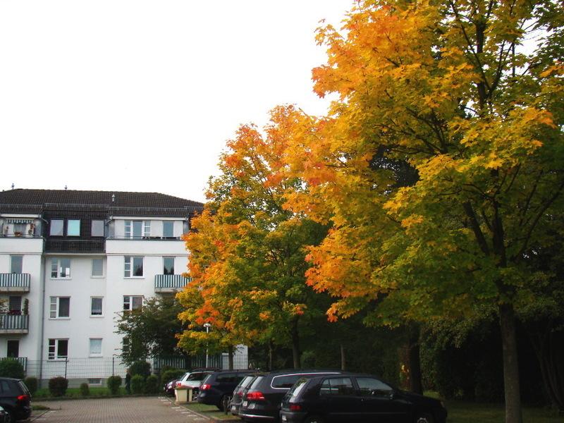 07_Schloßchemnitz.JPG