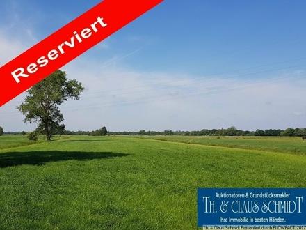 Reserviert: 6,6 Hektar Grünlandflächen zur Reinvestition oder zur Selbstnutzung zw. OL und Brake