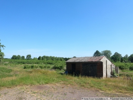 rd. 2,1 ha Heidelbeerplantage mit weiteren rd. 1 ha Grünland in der Wesermarsch
