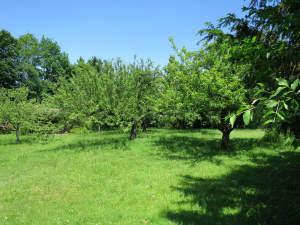 Bauplatz mit Obstbäumen in ruhiger Lage in Gschwend