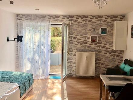 möbl. Luxus möbl. Appartment Wohnung süd Terrasse Garten Heidelberg ruhig hell