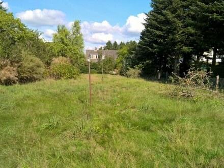 Von Privat-wunderschönes Grundstück mit altem Haus in Kellinghusen