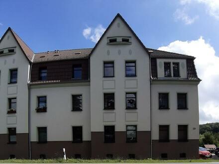 Renovierte 3-Raumwohnung mit Wintergarten in Werdau!