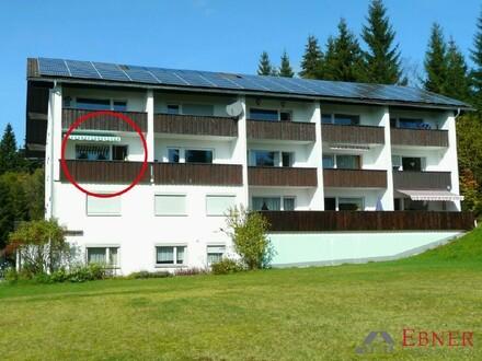 2-Zimmer Ferienwohnung in Haidmühle