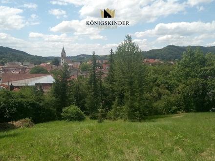 Sulzbach Murr: Top Grundstück für z.B. EFH oder 4 DHH in Aussichtslage mit guter Infrastruktur