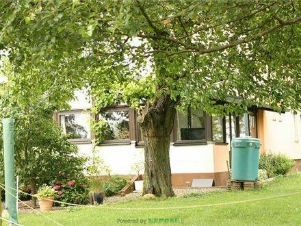 +++ Besonderes Wohnhaus für Ihre WG mit Ihren Pferden! Inkl. Stall, Reithalle, Reitplatz u. v. m. ++