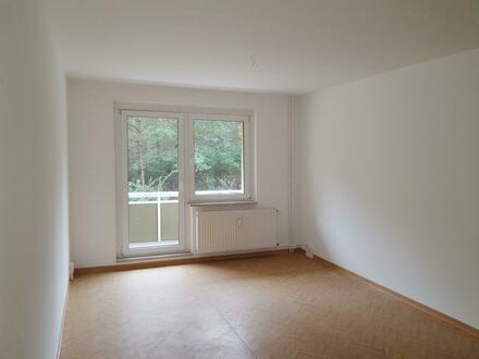 3-Zimmer-Wohnung im Erdgeschoss wartet auf neuen Mieter + Gutschein*
