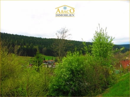 Altensteig-Berneck: Schickes Grundstück mit schönem Ausblick
