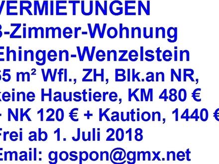 3-Zi-Wohnung in Ehingen