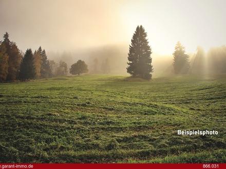 36 ha land- und forstwirtschaftliche Flächen