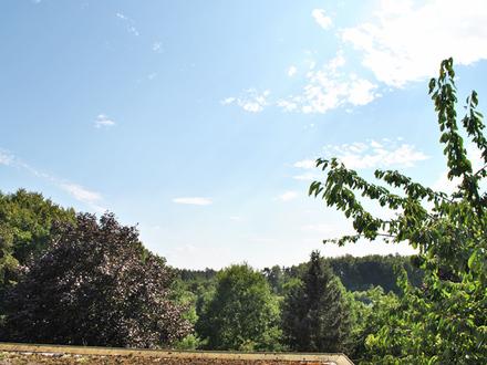 Wohnen im Naturpark Hausberge