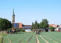 Erlenbach bei Kandel: Landleben mit Anschluss