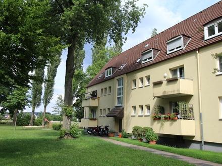 Gemütliche 4-Zimmer-Wohnung mit Blick ins Grüne