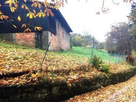 Stark renovierungsbedürftiges Einfamilienhaus für 85.000,--€ im Odenwald