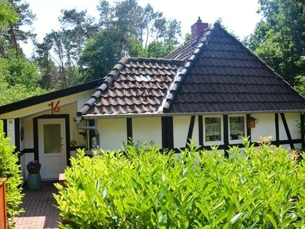 Bezauberndes Einfamilienhaus mit Waldgrundstück