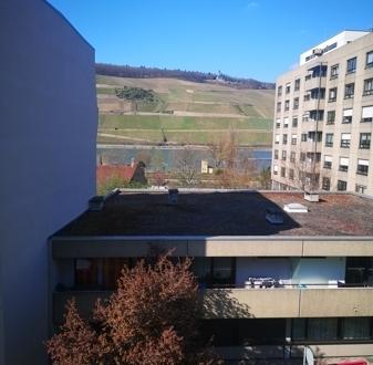 Neu Sanierte 2-Zimmer Wohnung in zentraler Lage Mainz-Bingen nähe City.